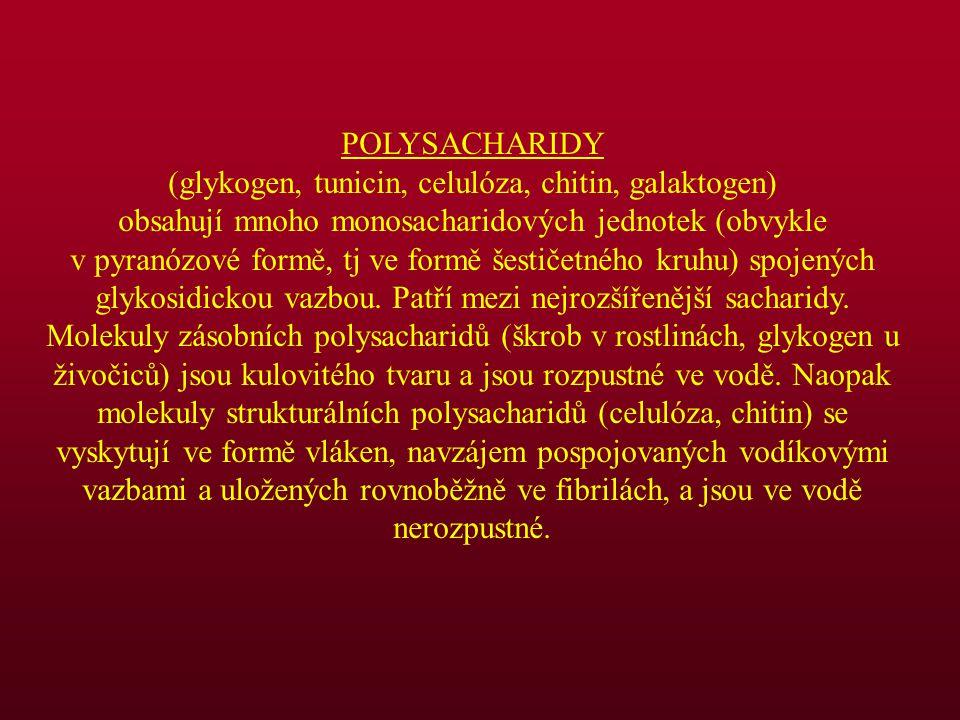 POLYSACHARIDY (glykogen, tunicin, celulóza, chitin, galaktogen) obsahují mnoho monosacharidových jednotek (obvykle v pyranózové formě, tj ve formě šes