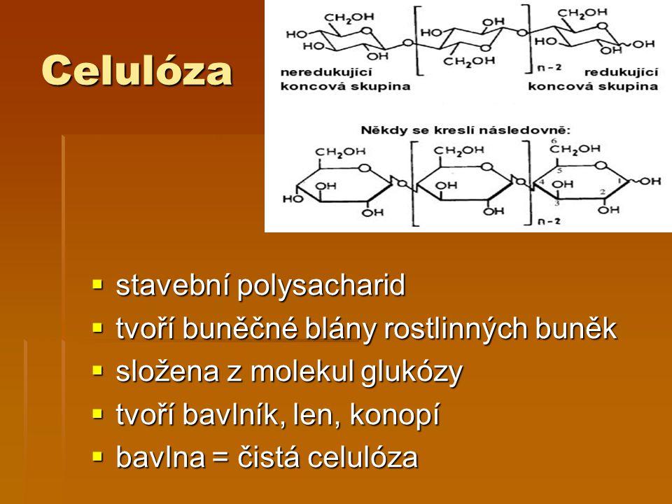 Celulóza  stavební polysacharid  tvoří buněčné blány rostlinných buněk  složena z molekul glukózy  tvoří bavlník, len, konopí  bavlna = čistá celulóza