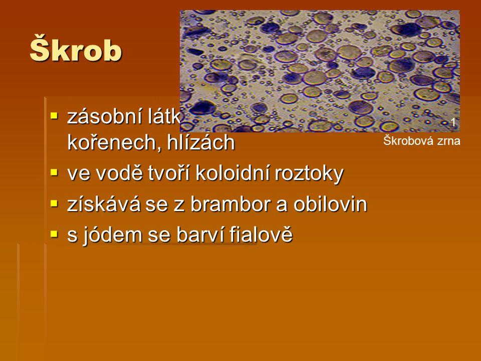 Škrob  zásobní látka rostlin – v semenech, kořenech, hlízách  ve vodě tvoří koloidní roztoky  získává se z brambor a obilovin  s jódem se barví fialově Škrobová zrna 1