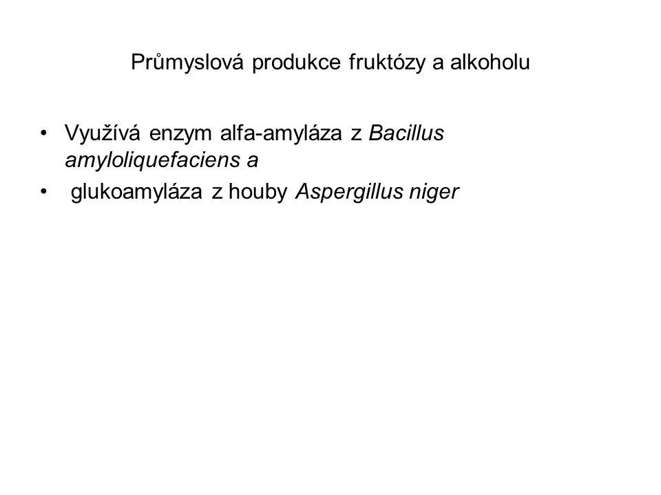 Průmyslová výroba fruktózy a alkoholu ze škrobu (Glick a spol.2003)