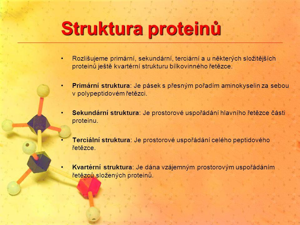Struktura proteinů Rozlišujeme primární, sekundární, terciární a u některých složitějších proteinů ještě kvartérní strukturu bílkovinného řetězce. Pri