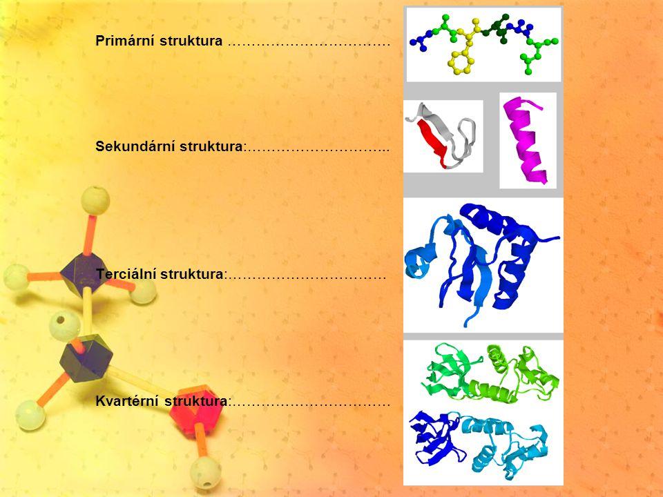 Nukleové kyseliny Nukleová kyselina je makromolekulární látka tvořená polynukleotidovým řetězcem, který ve své struktuře uchovává genetickou informaci.Tím vlastně určují program činnosti buňky (a organizmu jako takového).