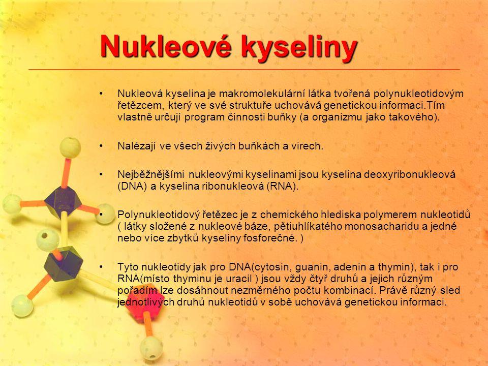 Nukleové kyseliny Nukleová kyselina je makromolekulární látka tvořená polynukleotidovým řetězcem, který ve své struktuře uchovává genetickou informaci