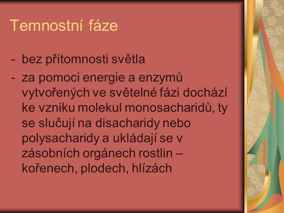 Zástupce monosacharidů Glukóza = hroznový cukr -nachází se v tkáních rostlin a živočichů jako významný energetický zdroj -bez glukózy nemůže fungovat mozek ani nervová soustava