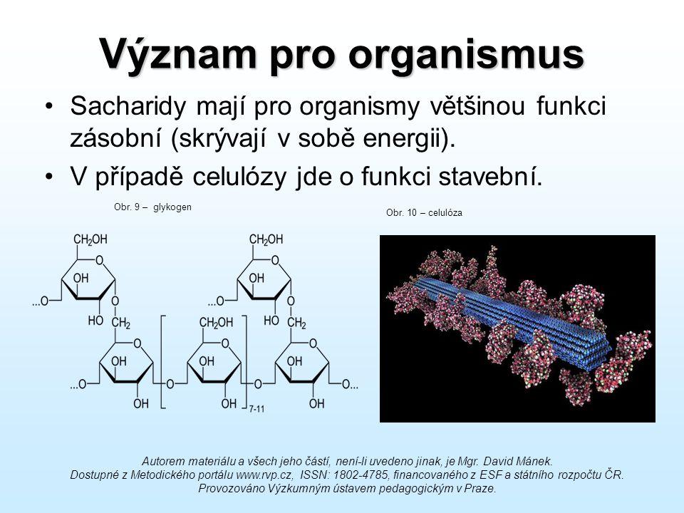Význam pro organismus Sacharidy mají pro organismy většinou funkci zásobní (skrývají v sobě energii). V případě celulózy jde o funkci stavební. Obr. 9