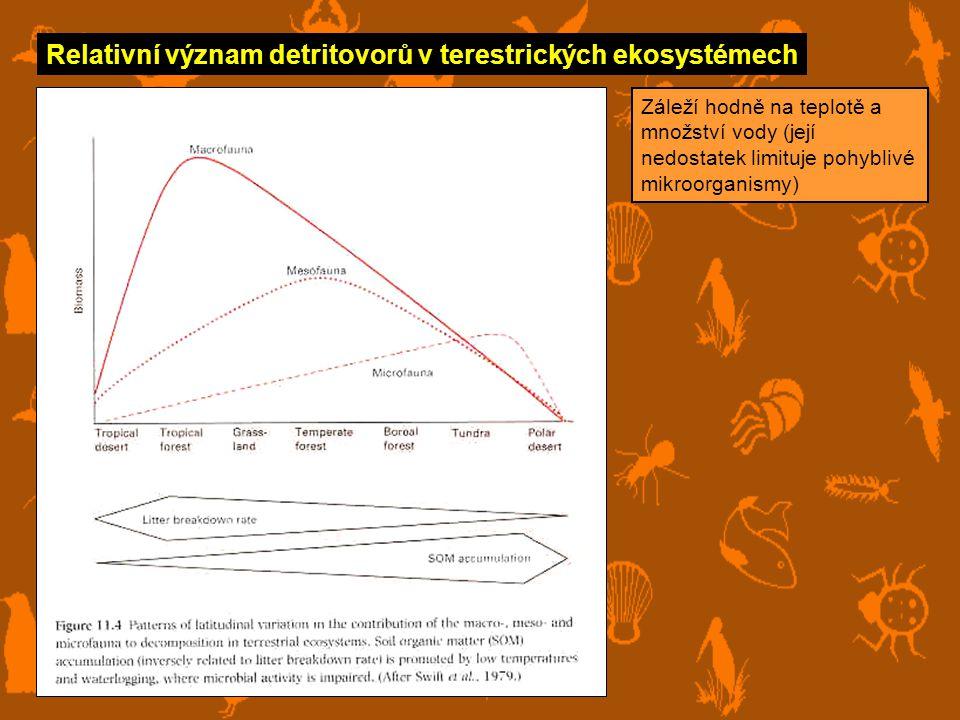 Relativní význam detritovorů v terestrických ekosystémech Záleží hodně na teplotě a množství vody (její nedostatek limituje pohyblivé mikroorganismy)