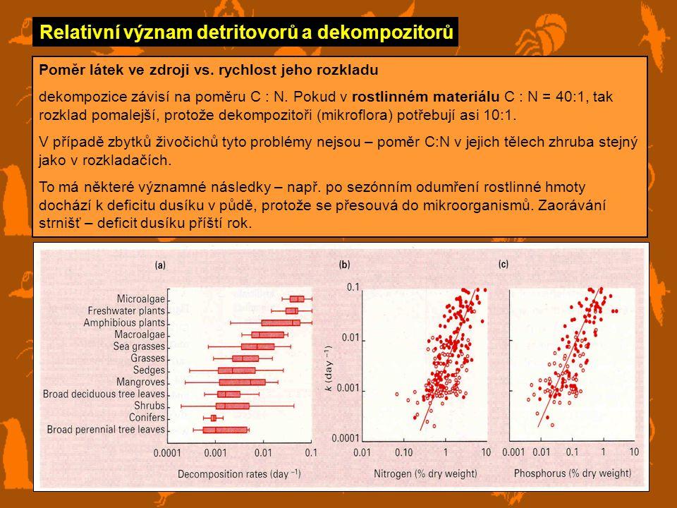 Relativní význam detritovorů a dekompozitorů Poměr látek ve zdroji vs.