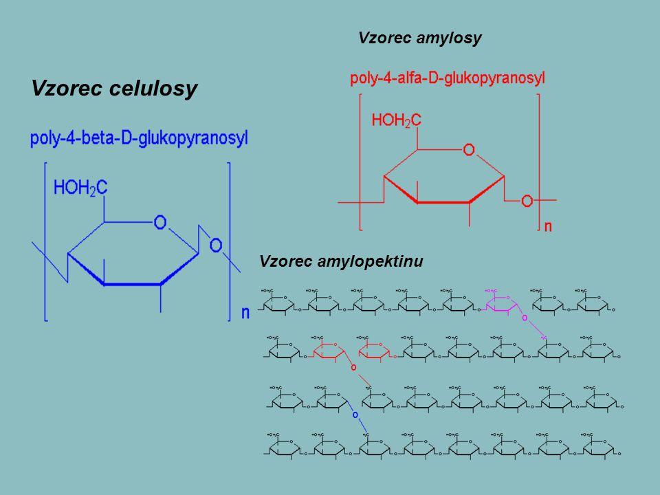 Vzorec celulosy Vzorec amylosy Vzorec amylopektinu