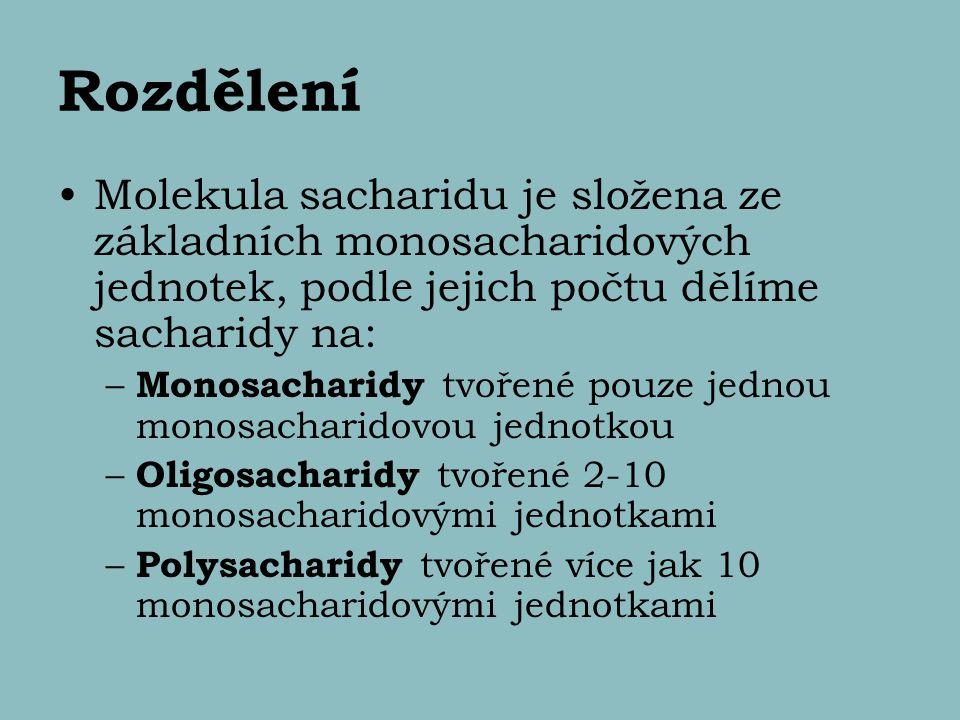 Rozdělení Molekula sacharidu je složena ze základních monosacharidových jednotek, podle jejich počtu dělíme sacharidy na: – Monosacharidy tvořené pouz