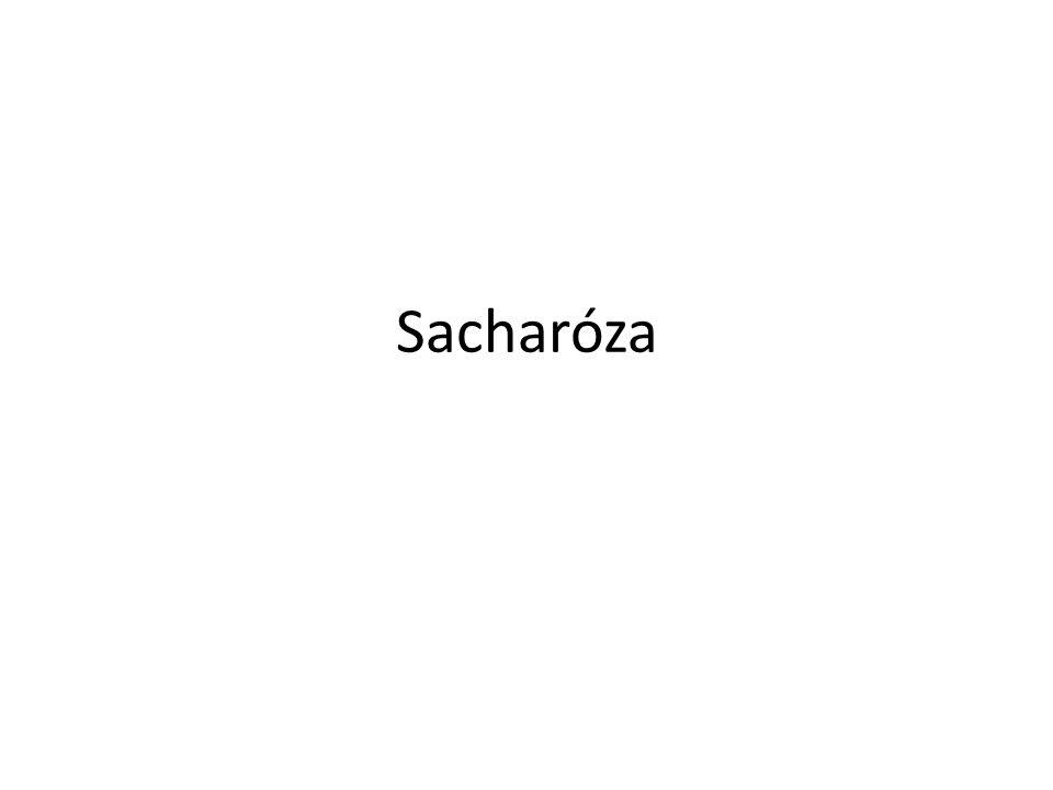 Sacharóza