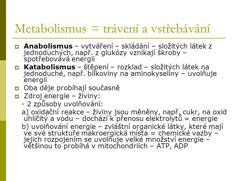 Metabolismus = trávení a vstřebávání  Anabolismus – vytváření – skládání – složitých látek z jednoduchých, např. z glukózy vznikají škroby – spotřebo