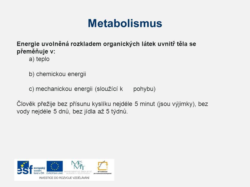 Metabolismus Energie uvolněná rozkladem organických látek uvnitř těla se přeměňuje v: a) teplo b) chemickou energii c) mechanickou energii (sloužící k