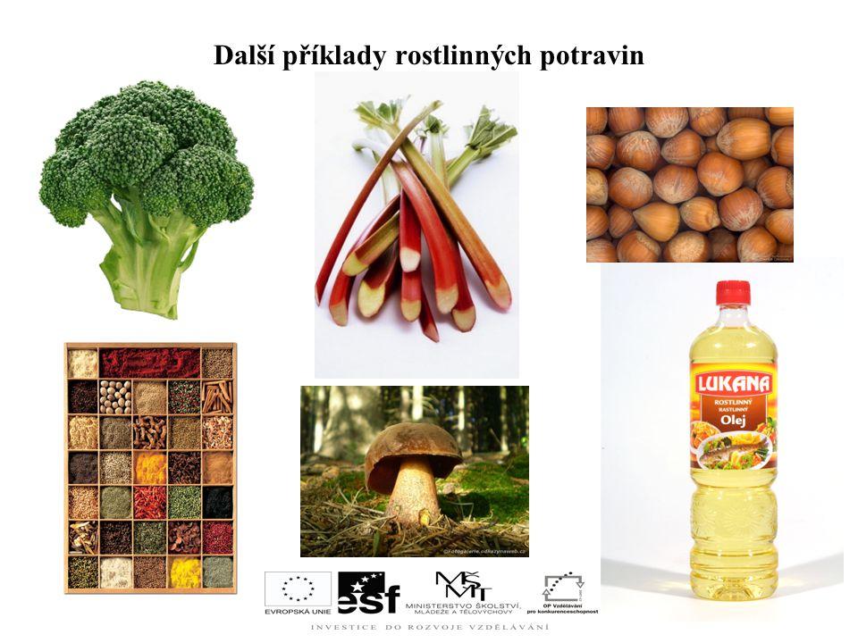 Použité zdroje www.google.cz www.wikipedia.cz www.seznam.cz www.nakupsnadno.cz www.ottovaencyklopedie.cz Jana Kolaříková: Potraviny a výživa Učebnice pro SŠ – 1.