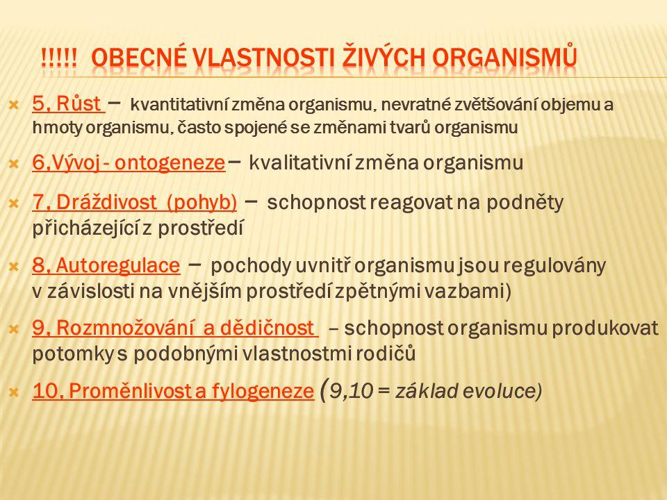  5, Růst – kvantitativní změna organismu, nevratné zvětšování objemu a hmoty organismu, často spojené se změnami tvarů organismu  6,Vývoj - ontogene