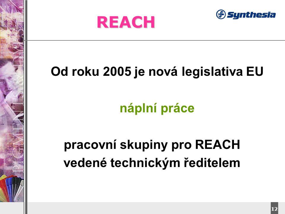 DyStar – Aliachem meeting 12 REACH Od roku 2005 je nová legislativa EU náplní práce pracovní skupiny pro REACH vedené technickým ředitelem