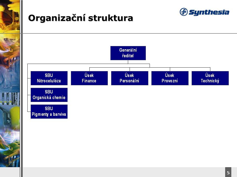 DyStar – Aliachem meeting 5 Organizační struktura