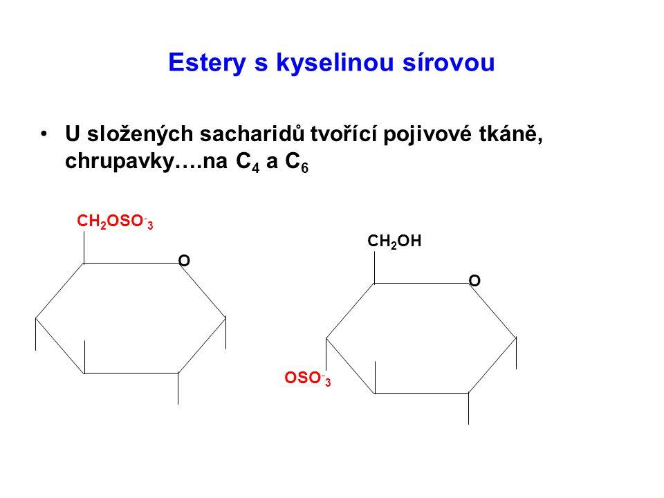 Estery s kyselinou sírovou U složených sacharidů tvořící pojivové tkáně, chrupavky….na C 4 a C 6 CH 2 OSO - 3 O CH 2 OH O OSO - 3