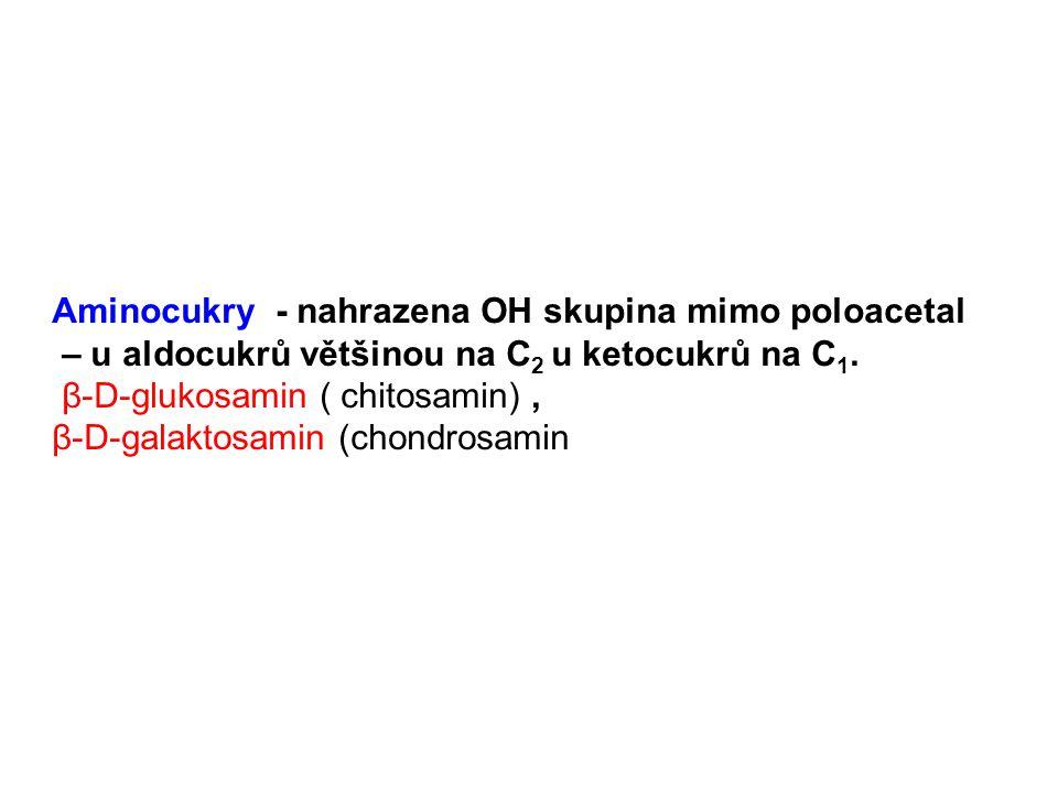 Aminocukry - nahrazena OH skupina mimo poloacetal – u aldocukrů většinou na C 2 u ketocukrů na C 1. β-D-glukosamin ( chitosamin), β-D-galaktosamin (ch