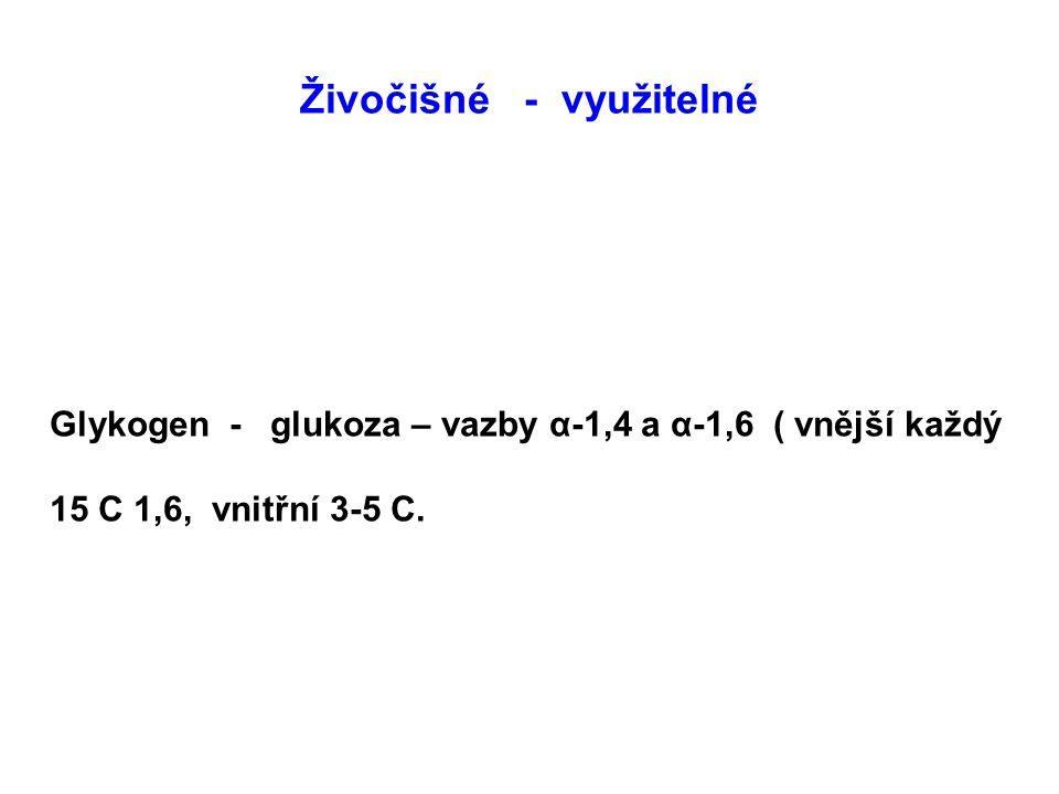 Živočišné - využitelné Glykogen - glukoza – vazby α-1,4 a α-1,6 ( vnější každý 15 C 1,6, vnitřní 3-5 C.