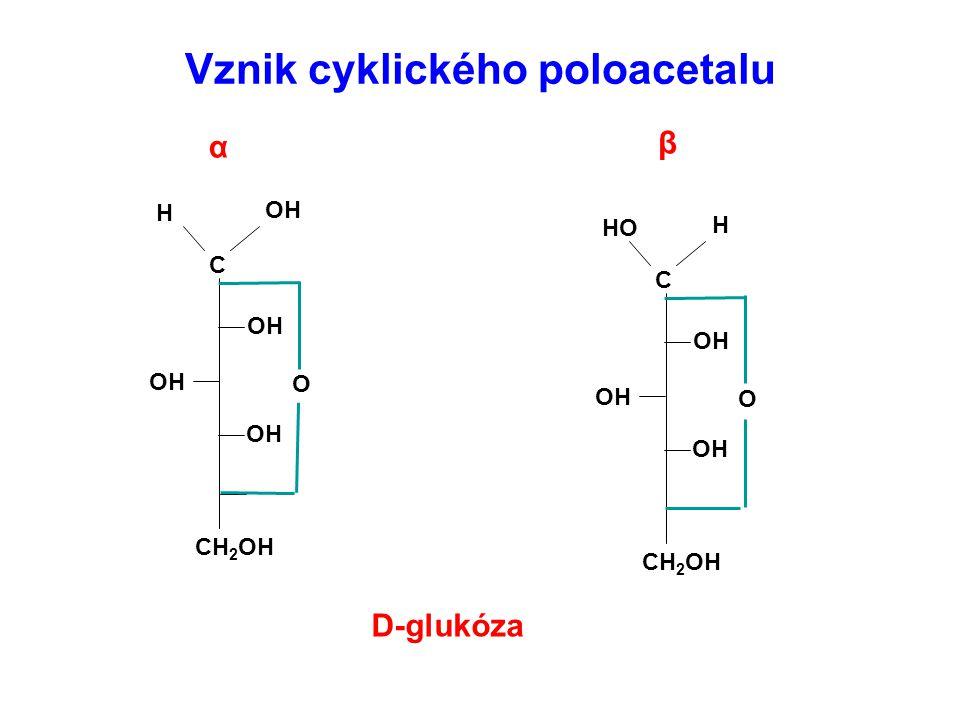 C CH 2 OH O OH H C CH 2 OH O OH H HO Vznik cyklického poloacetalu D-glukóza α β