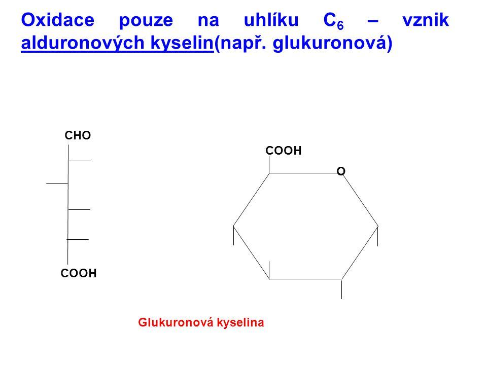 Oxidace pouze na uhlíku C 6 – vznik alduronových kyselin(např. glukuronová) CHO COOH O Glukuronová kyselina