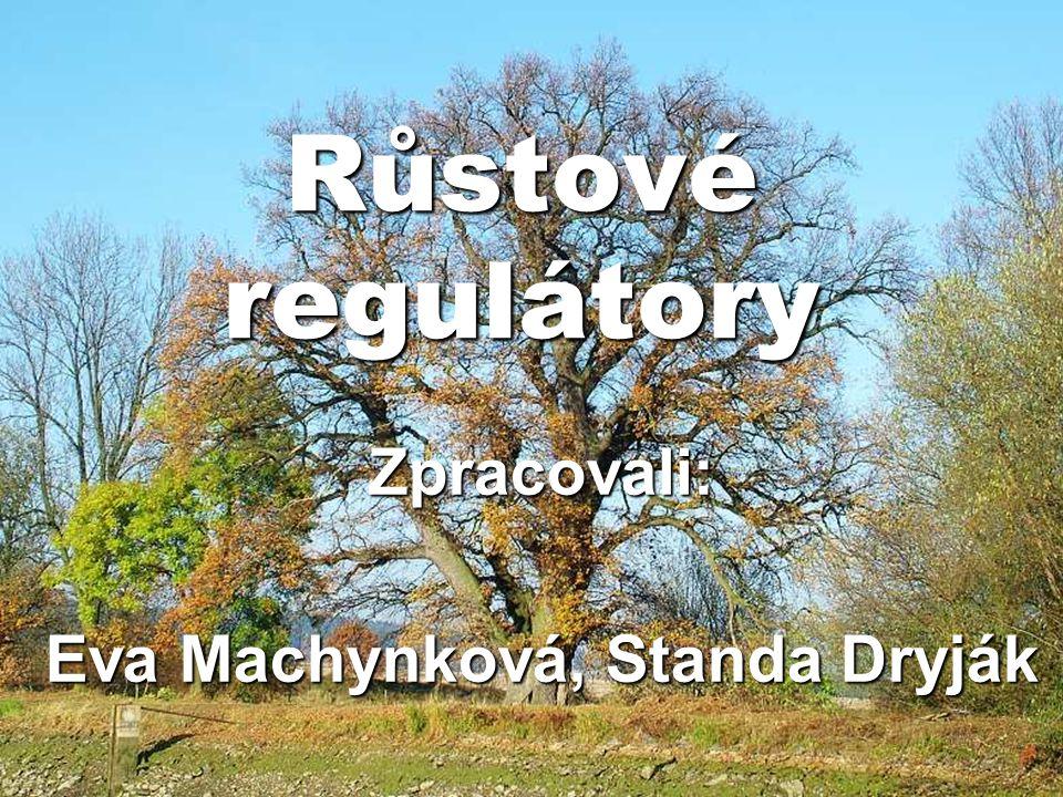 Růstové regulátory Zpracovali: Eva Machynková, Standa Dryják