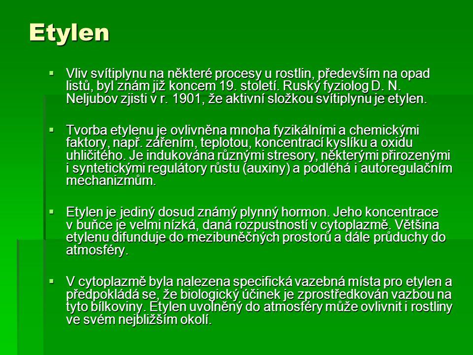 Etylen  Vliv svítiplynu na některé procesy u rostlin, především na opad listů, byl znám již koncem 19. století. Ruský fyziolog D. N. Neljubov zjisti