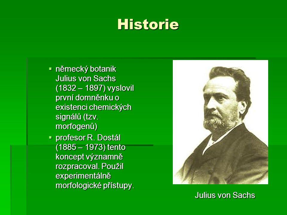 Historie  německý botanik Julius von Sachs (1832 – 1897) vyslovil první domněnku o existenci chemických signálů (tzv. morfogenů)  profesor R. Dostál
