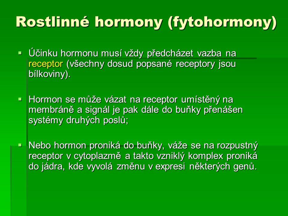Rostlinné hormony (fytohormony)  Účinku hormonu musí vždy předcházet vazba na receptor (všechny dosud popsané receptory jsou bílkoviny).  Hormon se