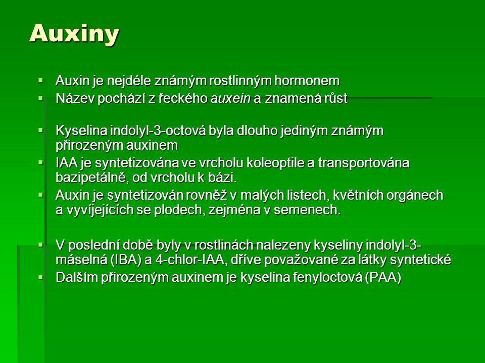 Hlavní fyziologické účinky auxinů  Stimulace prodlužovacího růstu  S růstovou stimulací souvisí i úloha auxinu v regulaci tropizmů (gravitropizmus, fototropizmus)  Apikální dominance  Podobně je auxinem udržována dominance plodů  Stimulace zakořeňování  Auxiny stimulují tvorbu adventivních kořenů na segmentech stonků i u explantátů  Stimulace dělení buněk  Auxiny stimulují nejen prodlužovací růst buněk, ale i jejich dělení