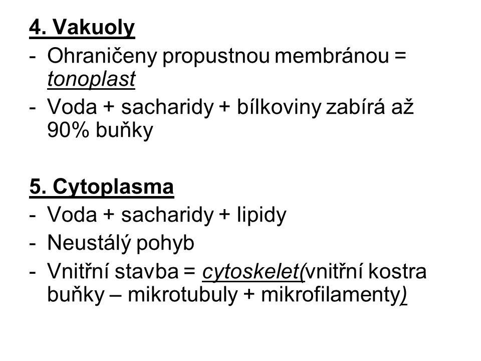 4. Vakuoly -Ohraničeny propustnou membránou = tonoplast -Voda + sacharidy + bílkoviny zabírá až 90% buňky 5. Cytoplasma -Voda + sacharidy + lipidy -Ne