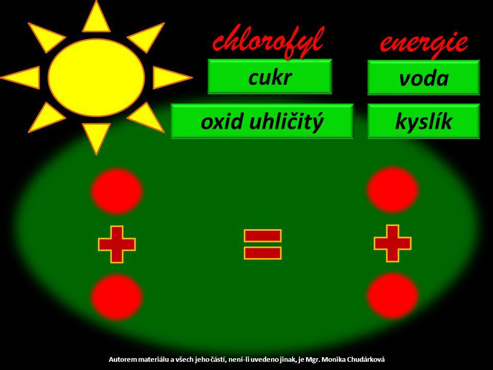 cukr chlorofyl energie voda kyslíkoxid uhličitý Autorem materiálu a všech jeho částí, není-li uvedeno jinak, je Mgr.