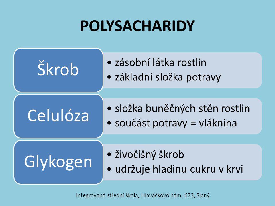 POLYSACHARIDY zásobní látka rostlin základní složka potravy Škrob složka buněčných stěn rostlin součást potravy = vláknina Celulóza živočišný škrob udržuje hladinu cukru v krvi Glykogen Integrovaná střední škola, Hlaváčkovo nám.