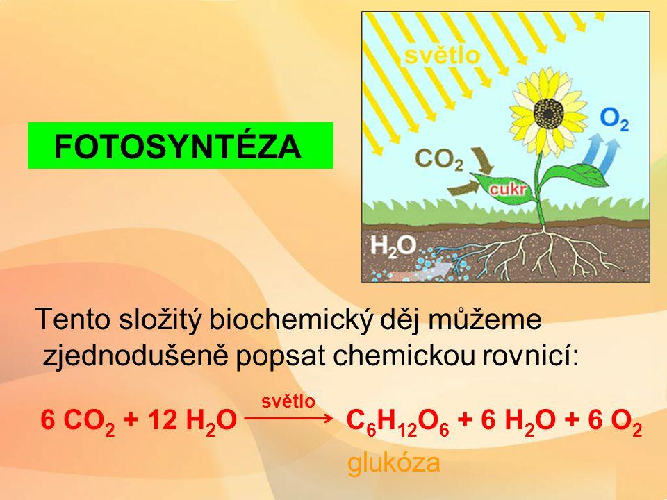 Tento složitý biochemický děj můžeme zjednodušeně popsat chemickou rovnicí: 6 CO 2 + 12 H 2 O C 6 H 12 O 6 + 6 H 2 O + 6 O 2 glukóza FOTOSYNTÉZA světlo
