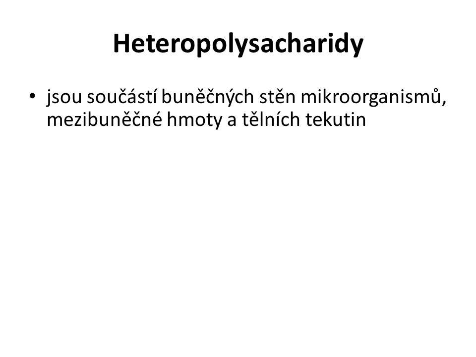Heteropolysacharidy jsou součástí buněčných stěn mikroorganismů, mezibuněčné hmoty a tělních tekutin