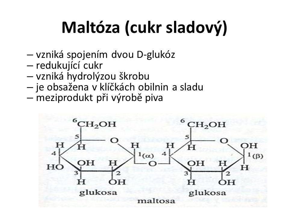 Maltóza (cukr sladový) – vzniká spojením dvou D-glukóz – redukující cukr – vzniká hydrolýzou škrobu – je obsažena v klíčkách obilnin a sladu – meziprodukt při výrobě piva