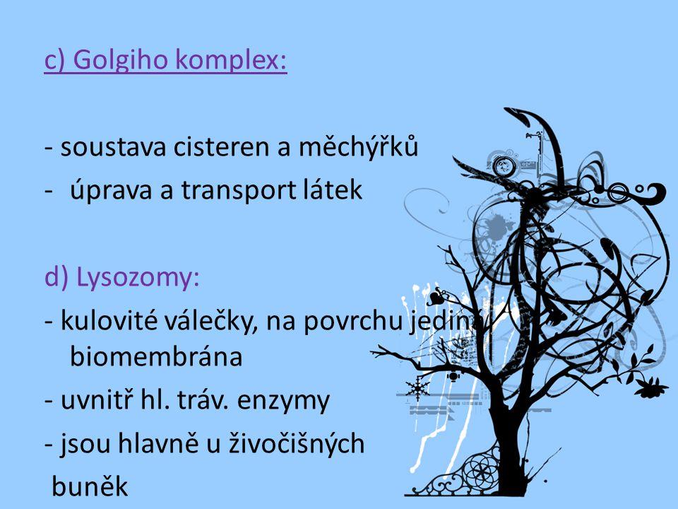 c) Golgiho komplex: - soustava cisteren a měchýřků -úprava a transport látek d) Lysozomy: - kulovité válečky, na povrchu jediná biomembrána - uvnitř hl.