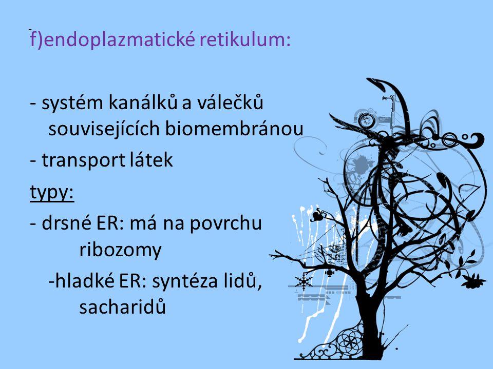 © Letohradské soukromé gymnázium o.p.s. f)endoplazmatické retikulum: - systém kanálků a válečků souvisejících biomembránou - transport látek typy: - d