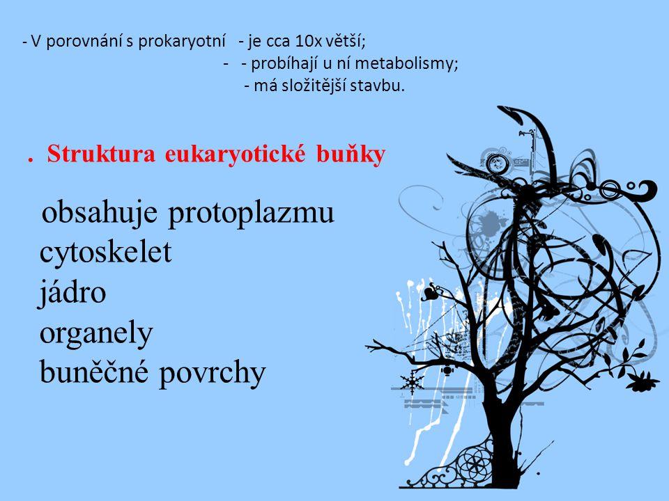 - V porovnání s prokaryotní - je cca 10x větší; - - probíhají u ní metabolismy; - má složitější stavbu.. Struktura eukaryotické buňky obsahuje protopl