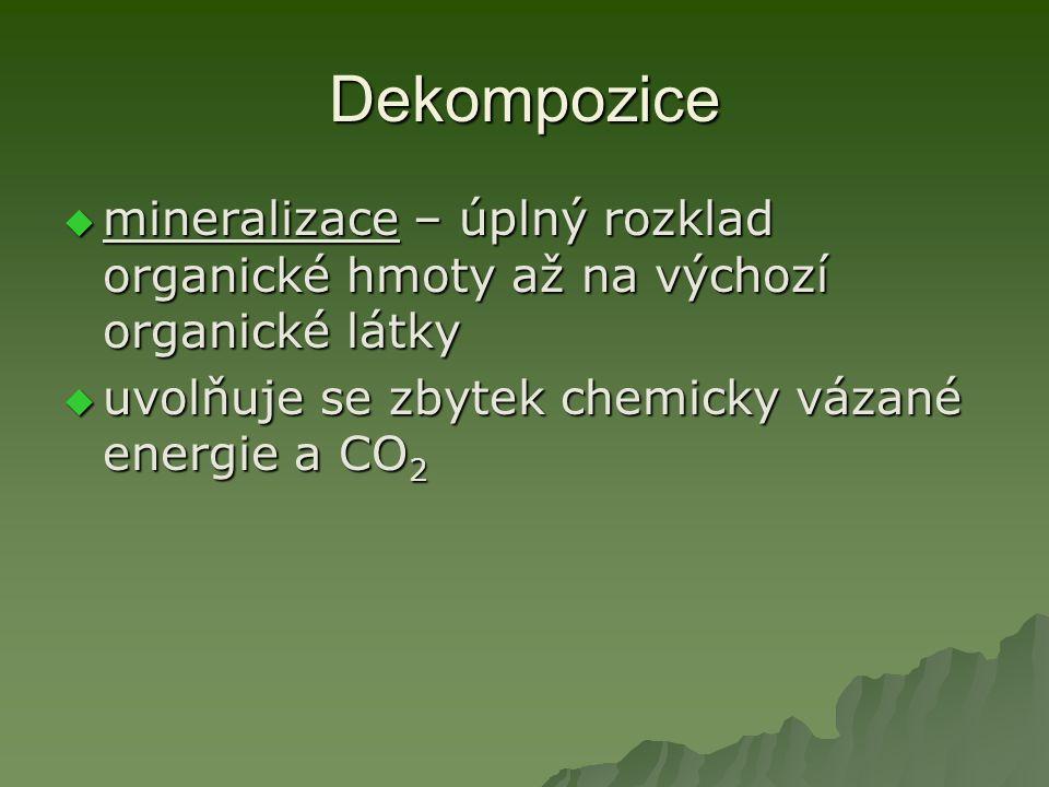 Dekompozice  mineralizace – úplný rozklad organické hmoty až na výchozí organické látky  uvolňuje se zbytek chemicky vázané energie a CO 2