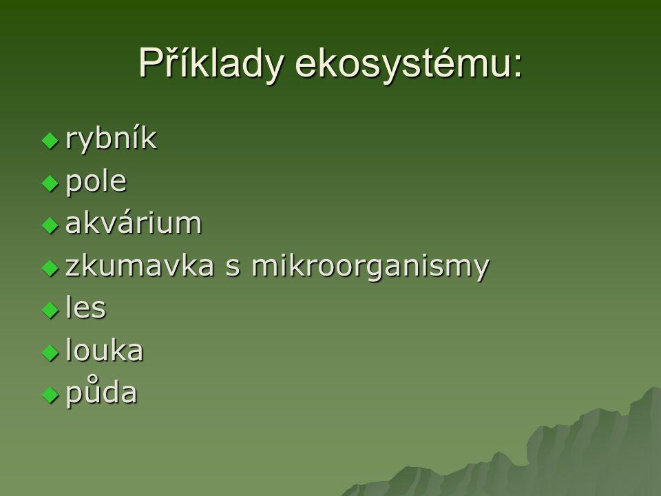 Složky ekosystému:  anorganické látky (C, N, CO 2, H 2 O)  organické látky (cukry, tuky, bílkoviny)  producenti (zelené rostliny)  konzumenti (býložravci, masožravci)  dekompozitoři (reducenti, baktérie, houby)