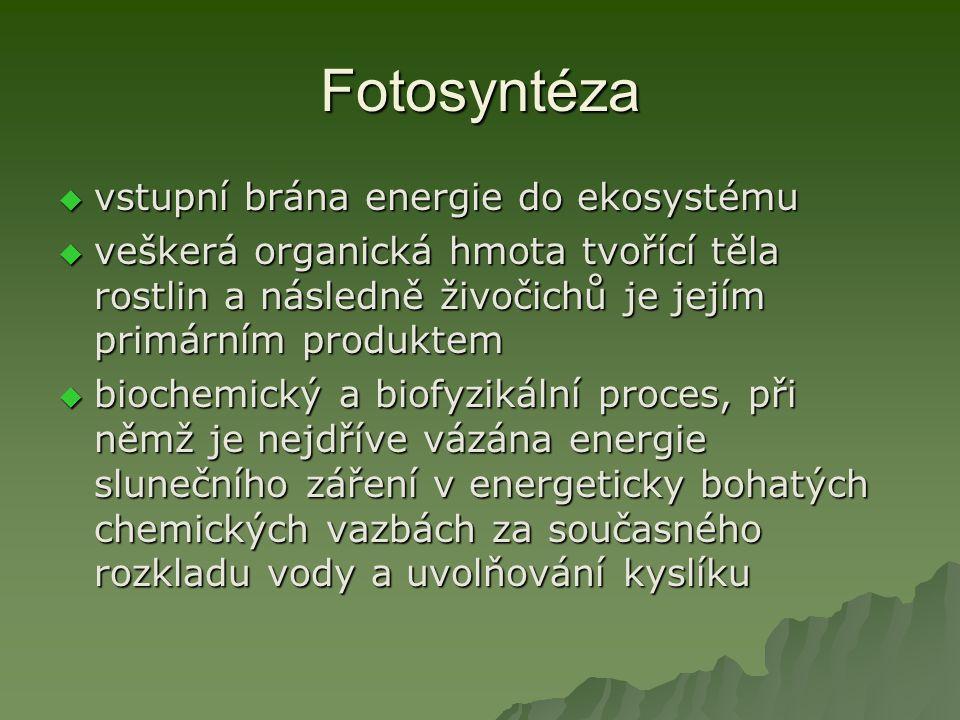 Fotosyntéza  vstupní brána energie do ekosystému  veškerá organická hmota tvořící těla rostlin a následně živočichů je jejím primárním produktem  biochemický a biofyzikální proces, při němž je nejdříve vázána energie slunečního záření v energeticky bohatých chemických vazbách za současného rozkladu vody a uvolňování kyslíku