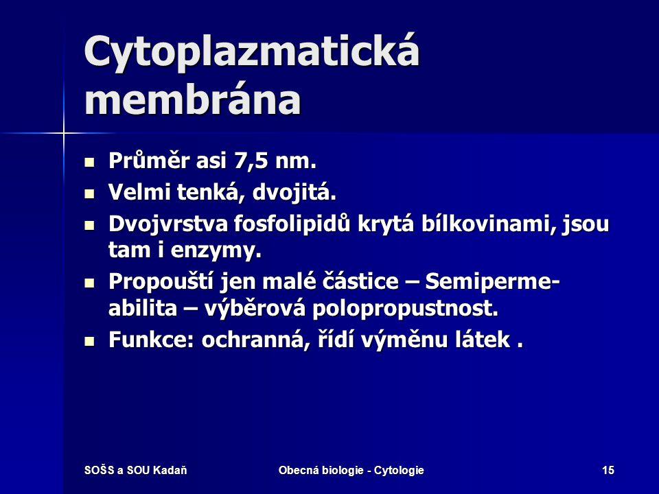 SOŠS a SOU KadaňObecná biologie - Cytologie15 Cytoplazmatická membrána Průměr asi 7,5 nm. Průměr asi 7,5 nm. Velmi tenká, dvojitá. Velmi tenká, dvojit