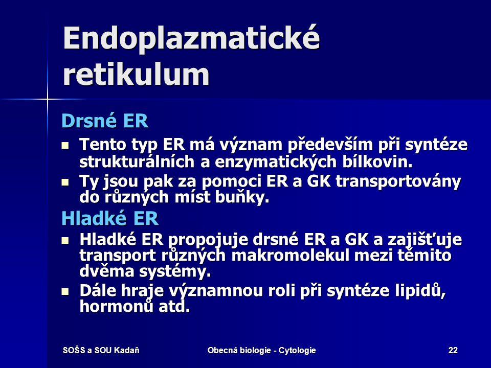 SOŠS a SOU KadaňObecná biologie - Cytologie22 Endoplazmatické retikulum Drsné ER Tento typ ER má význam především při syntéze strukturálních a enzymat