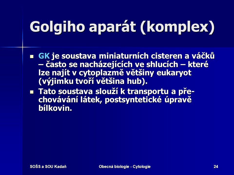 SOŠS a SOU KadaňObecná biologie - Cytologie24 Golgiho aparát (komplex) GK je soustava miniaturních cisteren a váčků – často se nacházejících ve shlucí