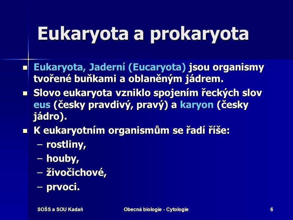 SOŠS a SOU KadaňObecná biologie - Cytologie6 Eukaryota a prokaryota Eukaryota, Jaderní (Eucaryota) jsou organismy tvořené buňkami a oblaněným jádrem.