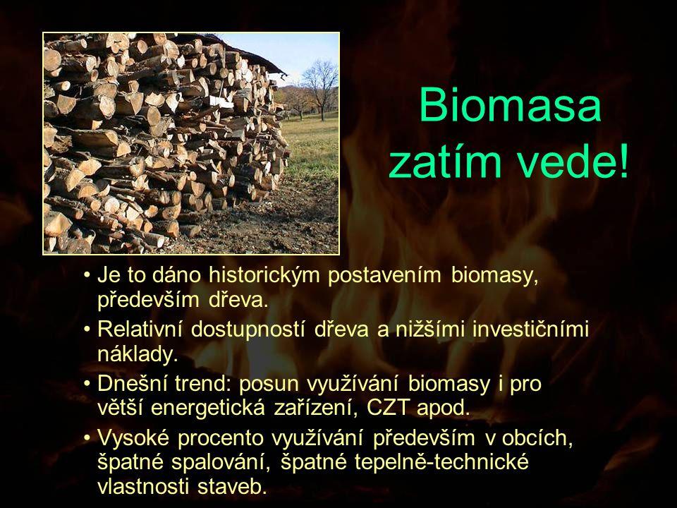Biomasa zatím vede. Je to dáno historickým postavením biomasy, především dřeva.