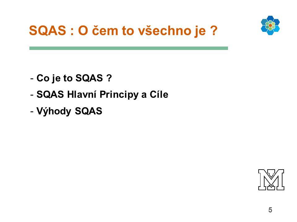 5 SQAS : O čem to všechno je ? - Co je to SQAS ? - SQAS Hlavní Principy a Cíle - Výhody SQAS