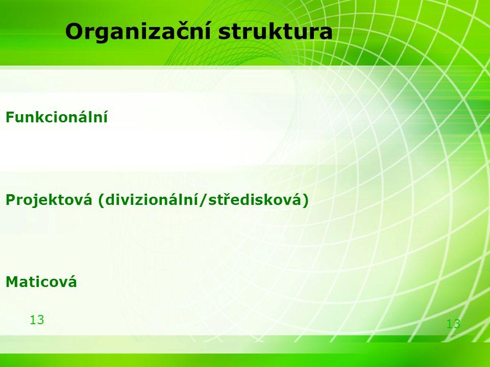 13 Organizační struktura Funkcionální Projektová (divizionální/středisková) Maticová