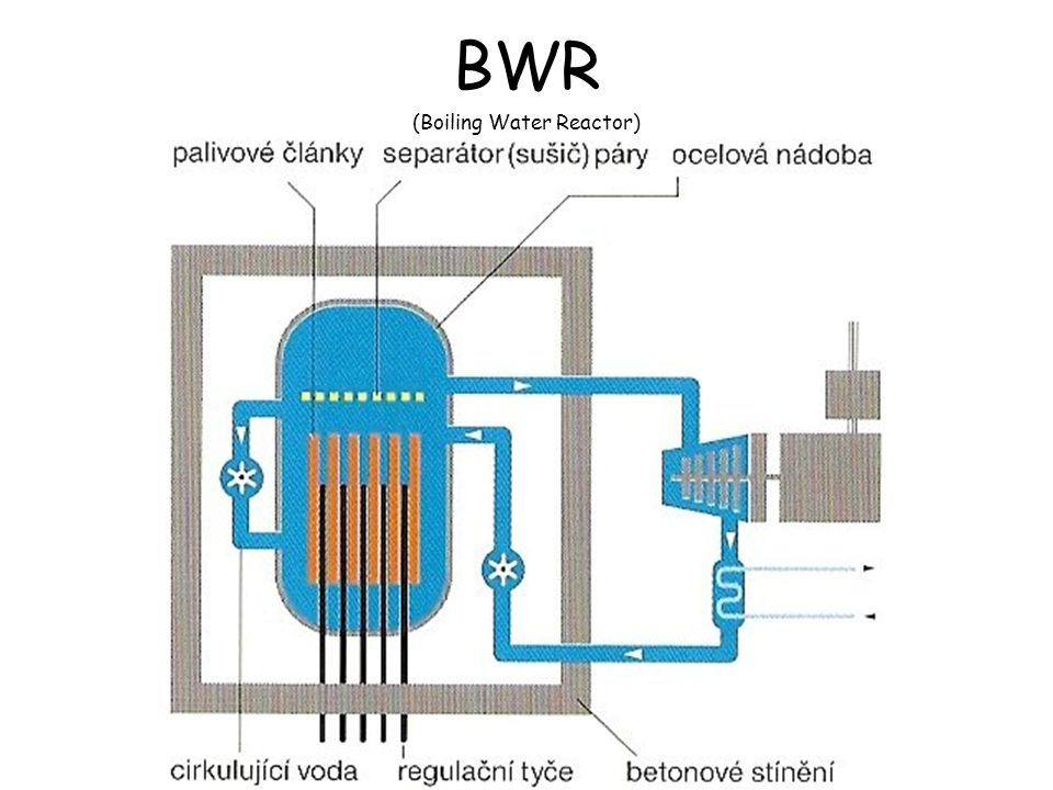 BWR (Boiling Water Reactor)